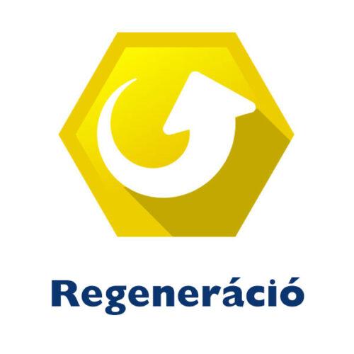 Regeneráció 02