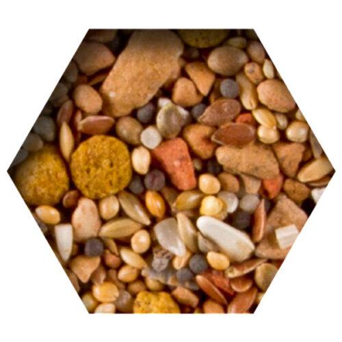 Beyers Urtica-Chlorella Mineral Mix